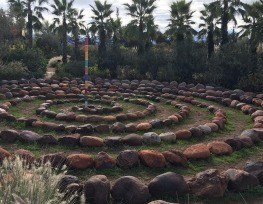 Darina's Saturday Letter: Marrakesh
