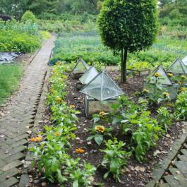 Herringbone Pathways, The Kitchen Potager - Ballymaloe Cookery School