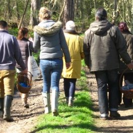 Foragers walking Colstoun Cookery School