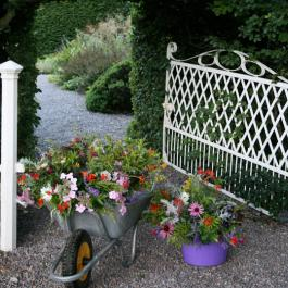 Entrance to Lydia's Garden - Ballymaloe Cookery School