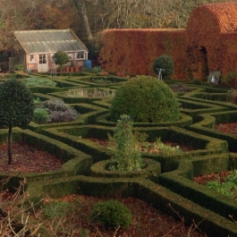 The Herb Garden in November - Ballymaloe Cookery School