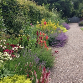 The colourful herbaceous border in the Water Garden - Ballymaloe Cookery School