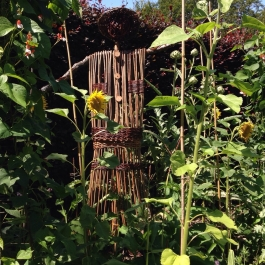 Our new scarecrow looking at home, surrounded by sunflowers and runner beans - Ballymaloe Cookery School