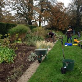 Planting bulbs and cutting back perennials in the herbaceous borders - Ballymaloe Cookery School