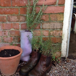 Making good use of these old boots - Ballymaloe Cookery School