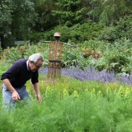 The Kitchen Potager - Ballymaloe Cookery School