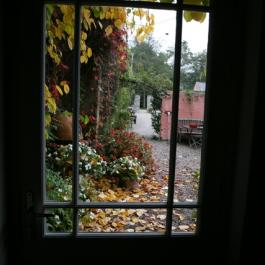 A view of the Courtyard at Ballymaloe Cookery school