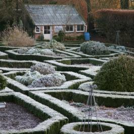 Frosty Morning, The Herb Garden - Ballymaloe Cookery School