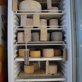 Cheeses Maturing in the Dairy - Ballymaloe Cookery School