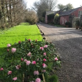Ballymaloe Cookery School Gardens