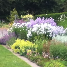 The Herbaceous Borders