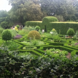 The Herb Garden in Summer.