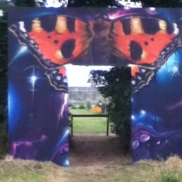 The new butterfly entrance to the vegetable field!